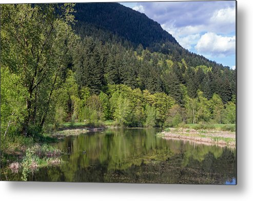 British Columbia Metal Print featuring the photograph Chilqua Slough by Michael Russell