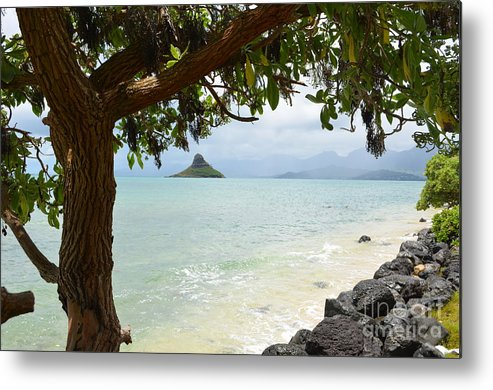 Chinaman's Hat Metal Print featuring the photograph Chinaman's Hat by Randy Edwards