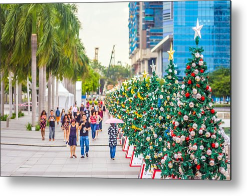Christmas Metal Print featuring the photograph Christmas Trees by Jijo George