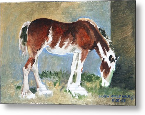 Horse Metal Print featuring the painting Clydesdale Colt Pad by Eileen Hale