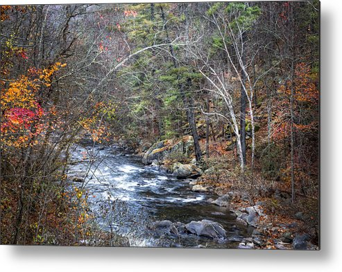 Appalachia Metal Print featuring the photograph Cold Mountain Stream by Debra and Dave Vanderlaan