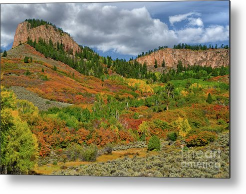 Colorado Metal Print featuring the photograph Colorado Fall Colors 1 by Kenneth Eis