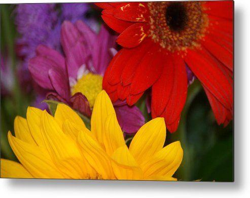 Flower Metal Print featuring the photograph Colorful Flowers by Liz Vernand