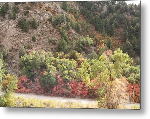 Landscape Metal Print featuring the photograph Colorful Hills by Linda Ostby