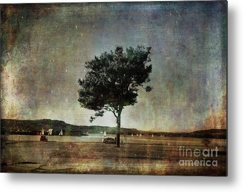 Coast Metal Print featuring the photograph Competition by Randi Grace Nilsberg