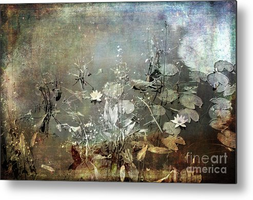 Pond Metal Print featuring the photograph Composition By Nature by Randi Grace Nilsberg