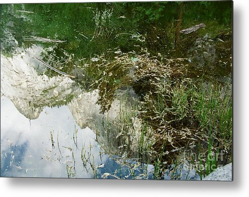 Mirror Lake Metal Print featuring the photograph Confusion by Kathy McClure
