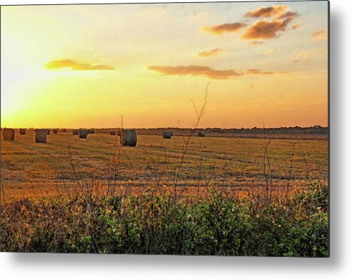 Country Metal Print featuring the photograph Country Pasture At Sunset by HH Photography of Florida