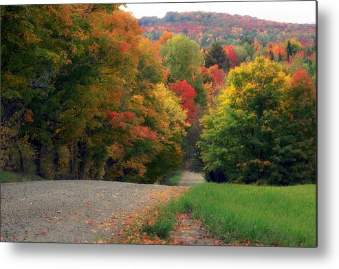 Autumn Metal Print featuring the photograph Country Road by John Compton