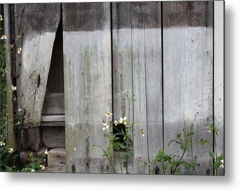 Fine Art Metal Print featuring the photograph Country Store Three by Paula Coley