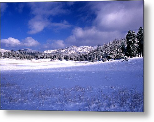 State Park Metal Print featuring the photograph Custer State Park by Barry Shaffer