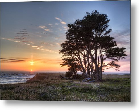 America Metal Print featuring the photograph Cypress At Sunset by Alan Kepler