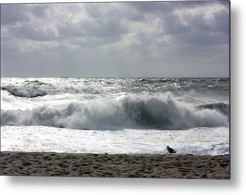 Landscape Metal Print featuring the photograph Dangerous Morning by Mary Haber