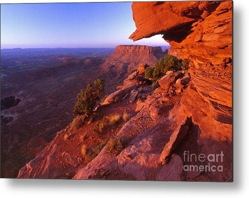 Dead Horse State Park Metal Print featuring the photograph Dead Horse Point Sunset by Sven Brogren
