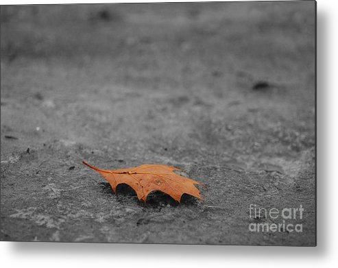 Autumn Metal Print featuring the photograph Dead Leaf by Evia Nugrahani Koos
