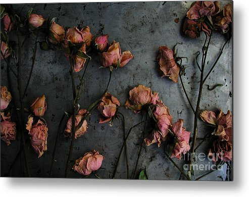 Flower Metal Print featuring the photograph Dead Roses 6 - Photo by Kathi Shotwell