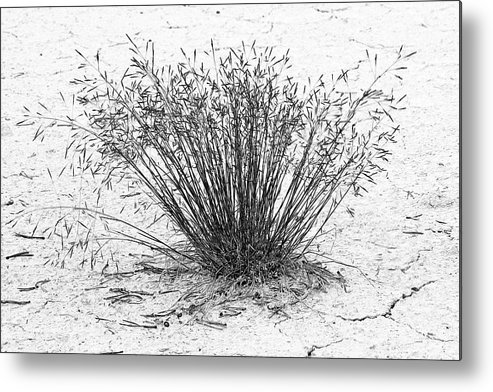 Death Valley National Park Metal Print featuring the photograph Death Valley National Park - Hot - Dry - Beautiful by Christine Till
