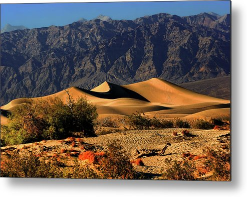 Death Valley National Park Metal Print featuring the photograph Death Valley's Mesquite Flat Sand Dunes by Christine Till