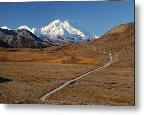 Denali Metal Print featuring the photograph Denali Is Out by Steve Wolfe