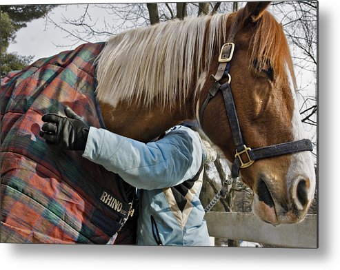 Horse Metal Print featuring the photograph Devotion by Jack Goldberg