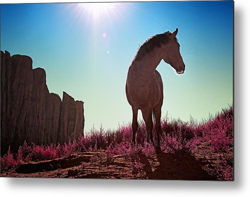 Horse Metal Print featuring the photograph Do Not Take Photos Of Me by Radek Spanninger