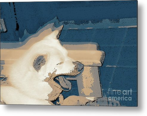 Doge Sneeze 3 Metal Print featuring the digital art Doge Sneeze 3 by Chris Taggart