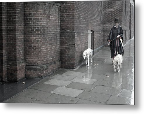 Jez C Self Metal Print featuring the photograph Doggie Strolling 1 by Jez C Self