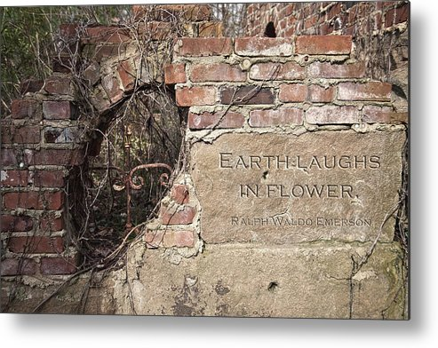 Wall Metal Print featuring the photograph Earth Laughs In Flower Wall by Tom Mc Nemar