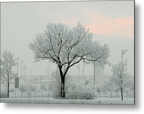 White Metal Print featuring the photograph Eerie Days by Christine Till