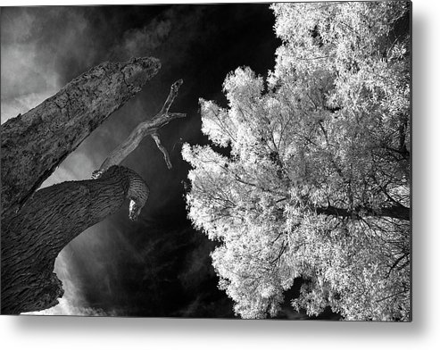 Arizona Metal Print featuring the photograph Eerie Skies In Cornville by Cathy Franklin