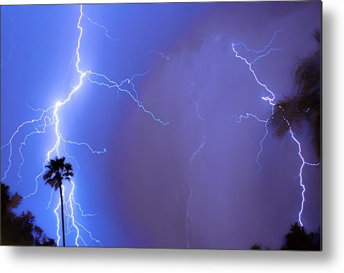 Lightning Metal Print featuring the photograph Electric Night by James BO Insogna