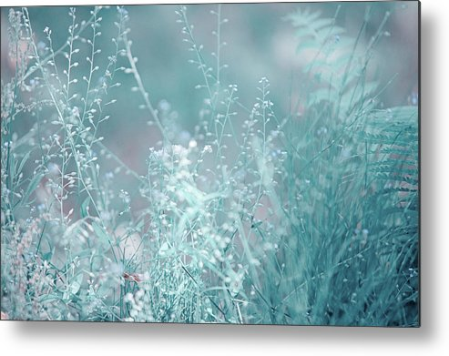 Jenny Rainbow Fine Art Photography Metal Print featuring the photograph Elvish Worlds 1. Nature In Alien Skin by Jenny Rainbow