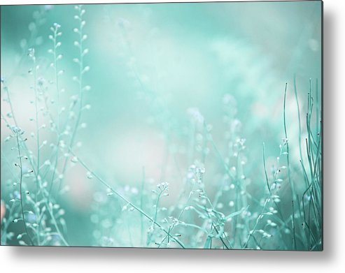 Jenny Rainbow Fine Art Photography Metal Print featuring the photograph Elvish Worlds. Nature In Alien Skin by Jenny Rainbow