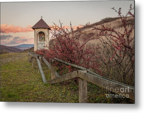 Landscape Metal Print featuring the photograph Evening Way by Lyudmila Prokopenko