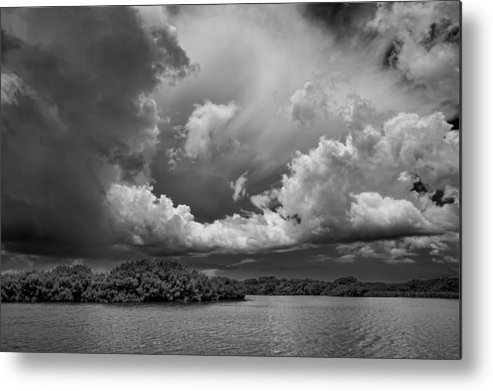 Everglades Metal Print featuring the photograph Everglades 0257bw by Rudy Umans