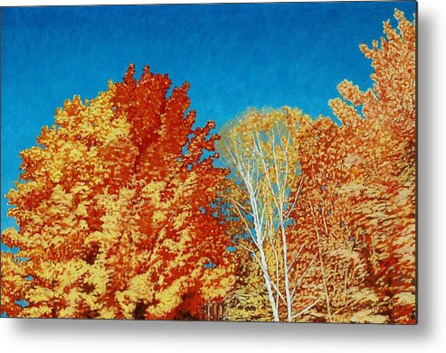 Fall Color Metal Print featuring the painting Fall by Allan OMarra