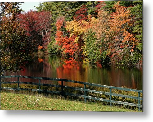 Fall Metal Print featuring the photograph Fall At The Farm by Gina Cormier