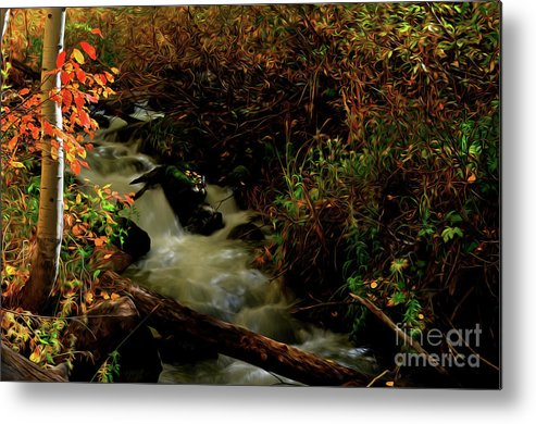 Colorado Metal Print featuring the photograph Fall Color Stream by Kenneth Eis
