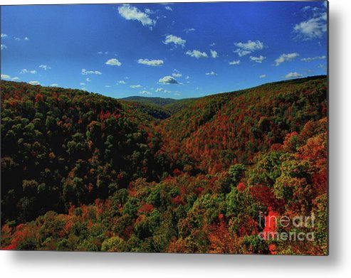 Fall Metal Print featuring the photograph Fall Colors by Kevin Kuchler