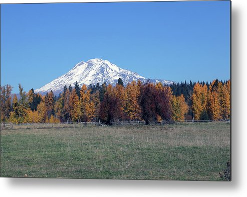 Mount Adams Metal Print featuring the photograph Fall Foliage by Mary Masters