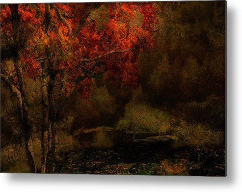 Fall Metal Print featuring the photograph Fall Woods by Jeff Burgess