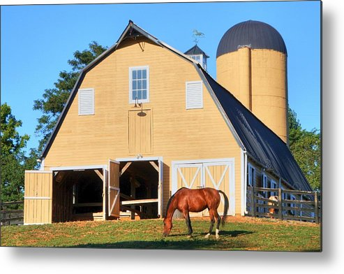 Farm Metal Print featuring the photograph Farm by Mitch Cat