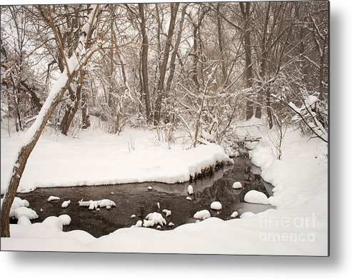February Metal Print featuring the photograph February Snow by Kimberly Noxon