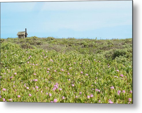 House Metal Print featuring the photograph Field Of Flowers by Michael Simeone
