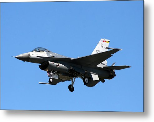 Fighter Metal Print featuring the photograph Fighter by Vasil Vasilev
