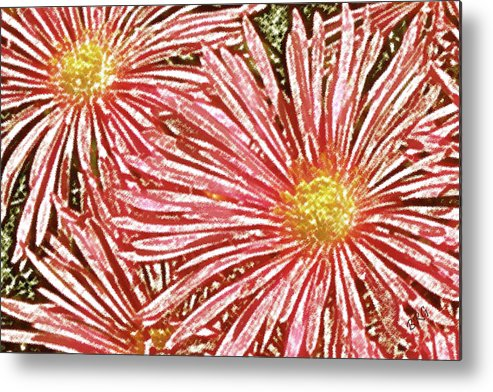 Ice Plant Flowers Metal Print featuring the photograph Floral Design No 1 by Ben and Raisa Gertsberg