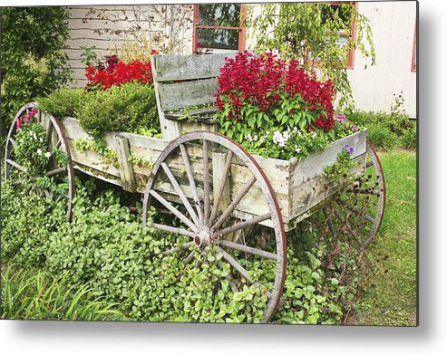 Wagon Metal Print featuring the photograph Flower Wagon by Margie Wildblood