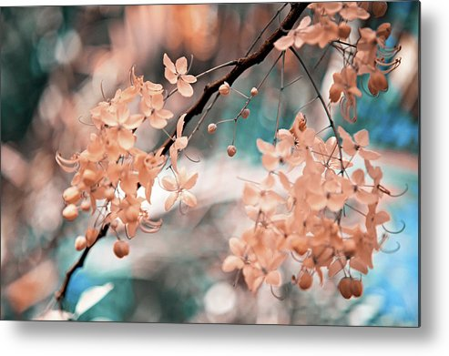 Jenny Rainbow Fine Art Photography Metal Print featuring the photograph Flowering Tree. Nature In Alien Skin by Jenny Rainbow