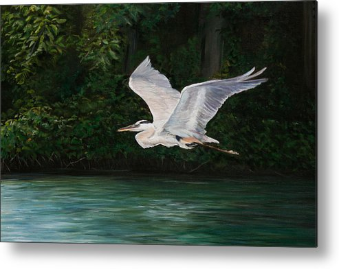 Bird Metal Print featuring the painting Fly By by Charlotte Yealey