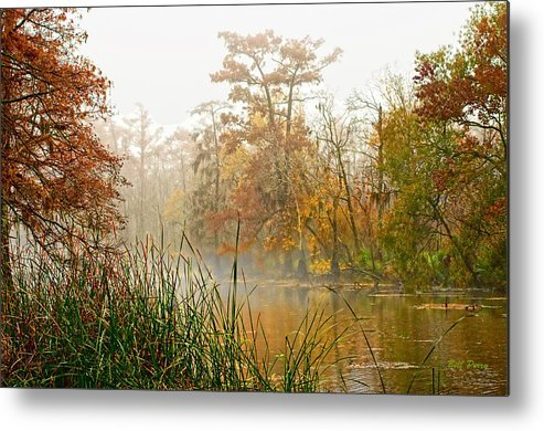 Landscape Metal Print featuring the photograph Fog On The Bayou by Bill Perry